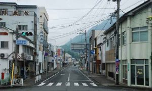 vivlia-iapwnia-japan-1